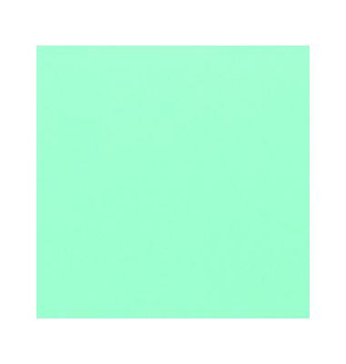 Umschlagfolien ColorClear CE011840E A4 PVC 0,2 mm grün-transparent glänzend 100 Stück