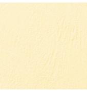 Umschlagkarton LeatherGrain CE040065 A4 Karton 250 g/m² elfenbein Lederstruktur 100 Stück