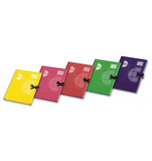 Sammelmappe 6979, A3 Karton, farbig sortiert