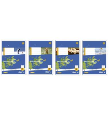 Schulheft Basic A5 Lineatur 8f rautiert mit Rand weiß 16 Blatt
