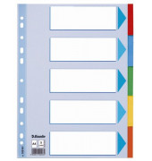 Kartonregister 100191 blanko A4 160g farbige Taben 5-teilig