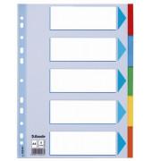 Kartonregister 100191 blanko A4 farbige Taben 5-teilig