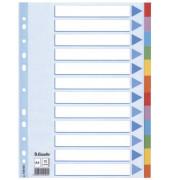 Kartonregister 100194 blanko A4 farbige Taben 12-teilig