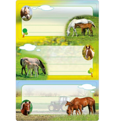 Schuletiketten Pferde