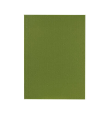 Aktendeckel 250g grün ohne Verschluss