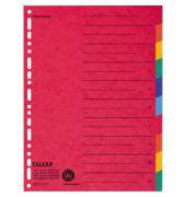 Kartonregister 80086390 blanko A4+ farbige Taben 10-teilig
