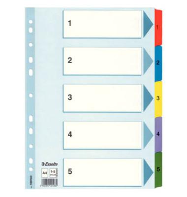 Kartonregister 100160 1-5 A4 160g farbige Taben 5-teilig