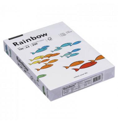 Coloured Paper A4 120g Kopierpapier weiß 250 Blatt