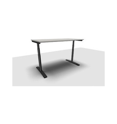 Schreibtisch Jump Move TR0018-4G3PGA1A1I400T1U0M ergonomisch grau rechteckig 160x80 cm (BxT) elektrisch höhenverstellbar