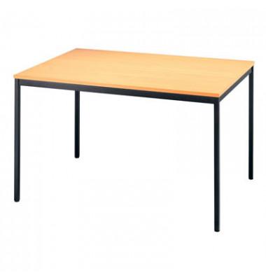 Konferenztisch V-Serie VS12/6 buche rechteckig 120x80 cm (BxT)
