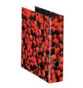 Motivordner maX.file Fruits A4 breit 80mm Kirschemotiv