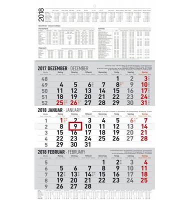 Dreimonatskalender 3Monate/1Seite 30x48,7cm 2021
