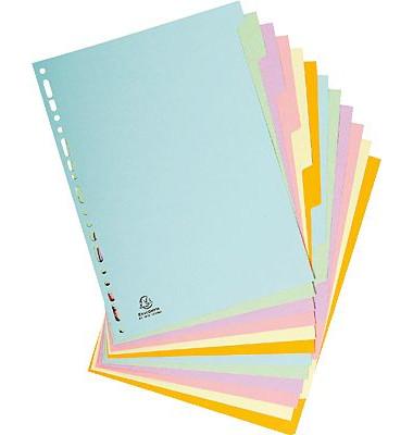 Kartonregister 1612E Forever Bicolor blanko A4 160g farbige Taben 12-teilig