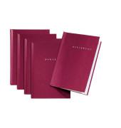 Bewerbungsmappe 22005 Start mit Klemme A4 bis 15 Blatt rot 5 Stück