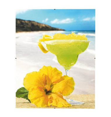 Rahmenloser Bilderhalter Clip-Fix 29,7 x 42cm PS-Glas