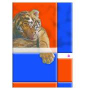 Schulheft Tiermotiv A5 Lineatur 5 kariert weiß 16 Blatt