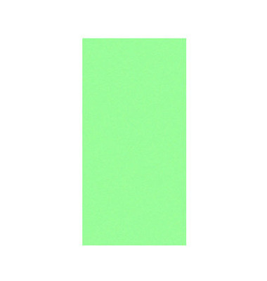 Moderationskarten Rechtecke grün 20x10cm 500 Stück