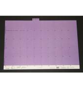 Selbstklebereiter numerisch violett 30mm breit 100 St