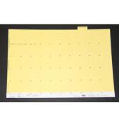 Selbstklebereiter numerisch hellgelb 30mm breit 100 St