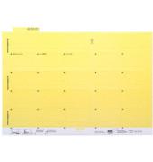 Selbstklebereiter gelb 55mm breit 100 Stück