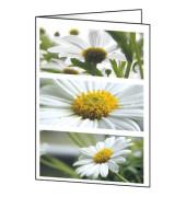 Faltkarte Romance Blumen A6 220g 25 St