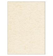 Motivpapier DP605 A4 90g champagne Pergament 100 Blatt