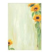 Motivpapier DP694 A4 90g Sunflower 25 Blatt