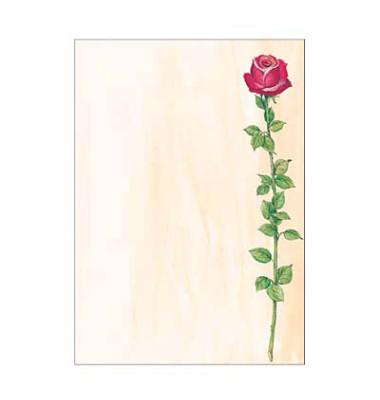 Motivpapier DP695 A4 90g Rose 25 Blatt
