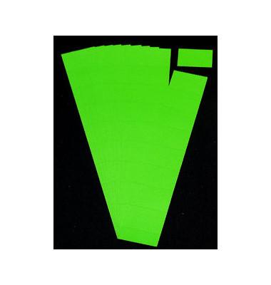 Einsteckkarten für Planrecord hellgrün 70x32mm 90 Stück