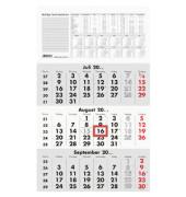 Dreimonatskalender 956 3Monate/1Seite 295x490mm 2021