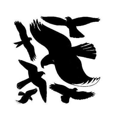 Fensterwarnvögel schwarz selbstklebend 28 x 28,5cm 6 Vögel
