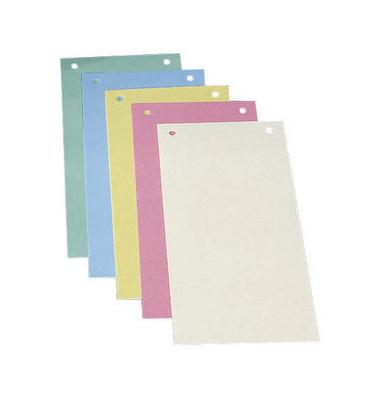Trennstreifen farbig sortiert 190g gelocht 240x105mm 50 Blatt