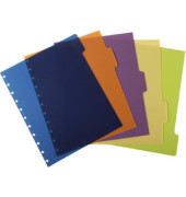Register ARC, PP, blanko, Speziallochung, A4, 5 Blatt, 5farbig (1 Stück)