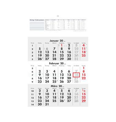 Dreimonatskalender 3Monate/1Seite 295x427mm 2019