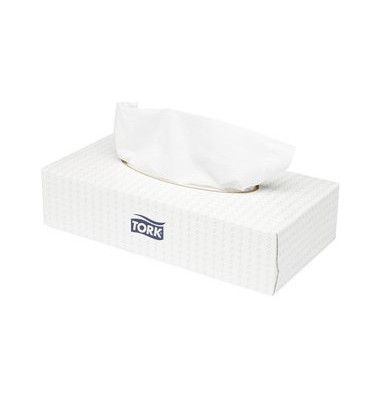 Kosmetiktücher 140280 extra soft Box F1 2-lagig 100 Tücher