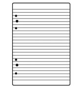 Ringbucheinlagen 1066301 liniert A5 6-fach gelocht 70g 50 Blatt