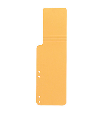 Aktenfahnen 9039753 gelb 320g gelocht 100x320mm 100 Blatt