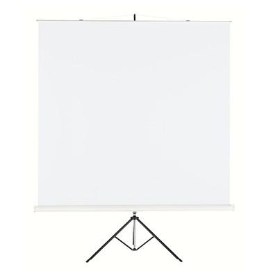 Stativleinwand Professional 1925867 244x244cm weiß