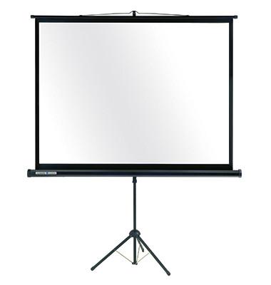Projektionswand Economy 7-531560 175,5x234cm 110Zoll