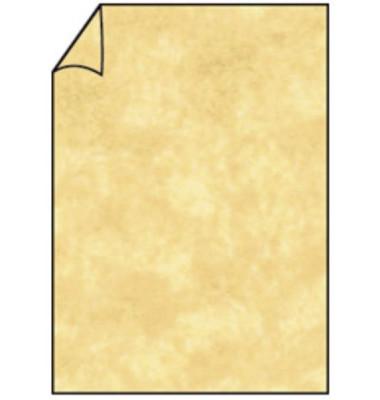 220701957 Briefbogen A4 80g 10ST sah.brn