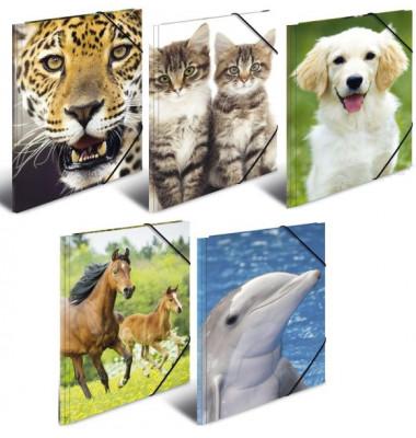 Sammelmappe A3 Tiere sortiert 5 Motive, PP