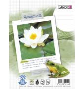 Collegeblock Recycling 100050220, A4 kariert, 70g 80 Blatt, 4-fach-Lochung