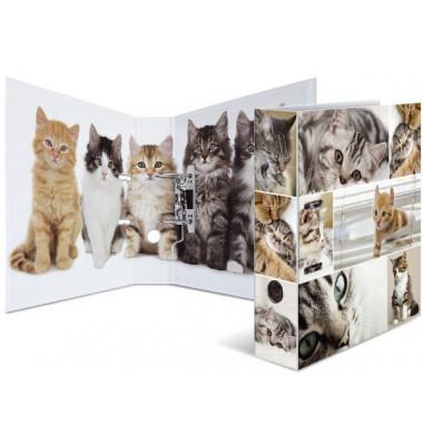 7166 Motivordner Tiere A4 Katzen