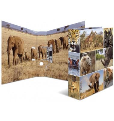 7168 Motivordner Tiere A4 Afrika Tiere