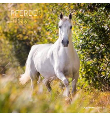 17.0106  30x60cm Bildkalender Pferde 2018