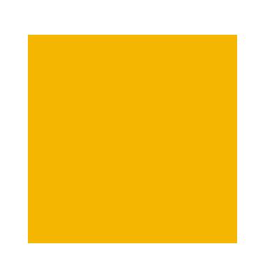 Fotokarton 70100cm goldgelb 300g 68010/15