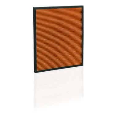 8710011 Antibakterieller PM2.5 Filter für Luftreiniger AP100