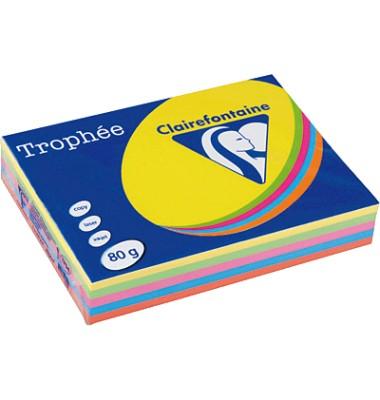Clairefontaine Kopierpapier Trophee farbig sortiert 4120C