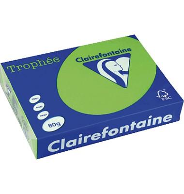 Clairefontaine Kopierpapier Trophee minzgrün intensiv
