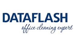 Data Flash Logo